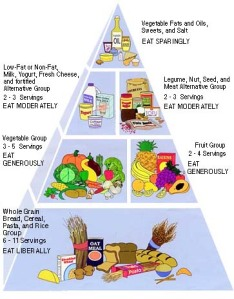 courtesy of http://food.indif.com/nutri/pyramid/vegan_pyramid.asp